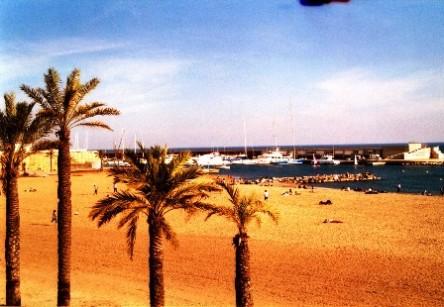 Thành phố biển